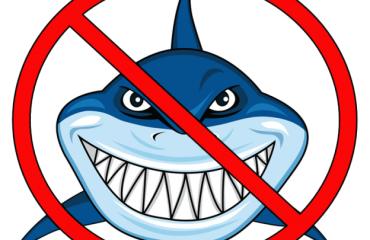 no-sharks-allowed-624x573